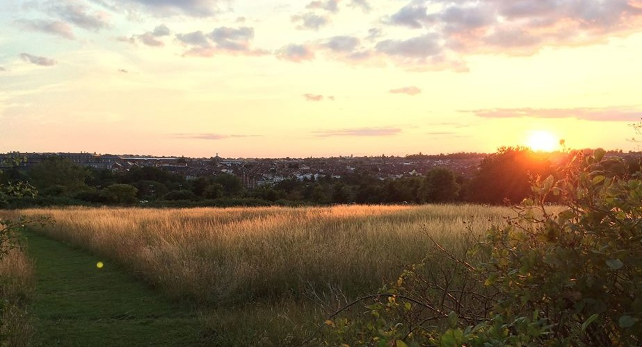South Purdown at Sunset